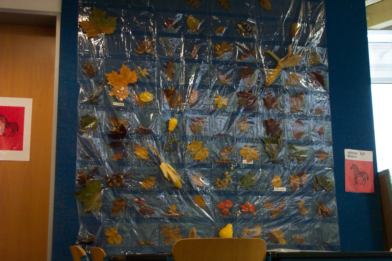 Herbstwerkstatt for Projekte im kindergarten herbst