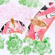 Schmetterling rot