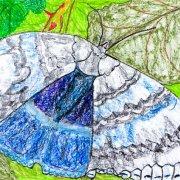 Schmetterling blau/weiss