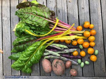 Permalink auf:AG Lebensmittelnahversorgung