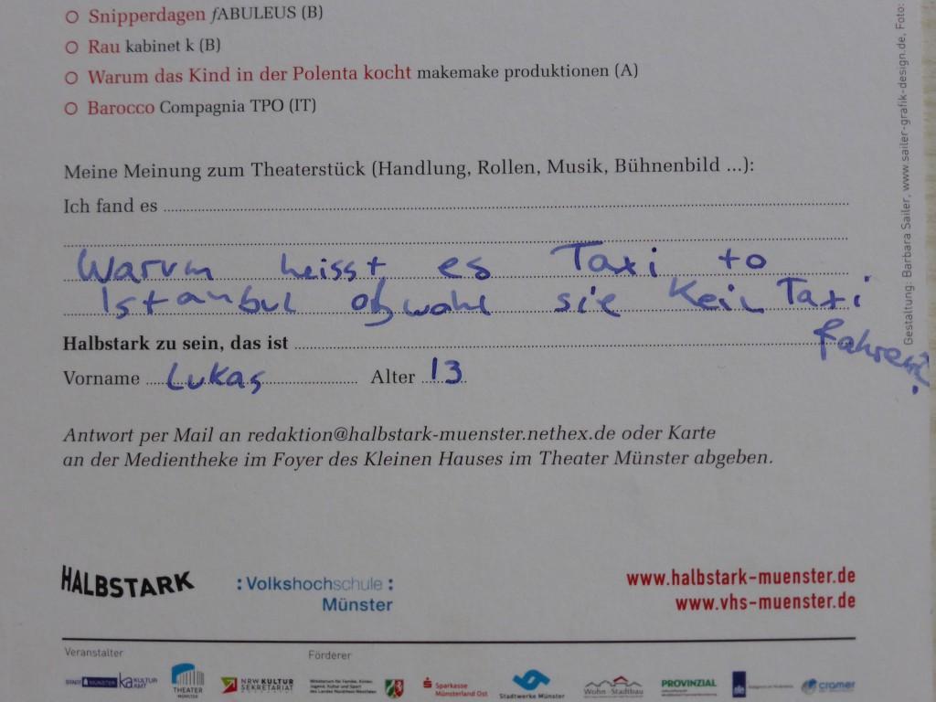 """Kommentar eines Zuschauers zu """"Taksi to Istanbul"""""""
